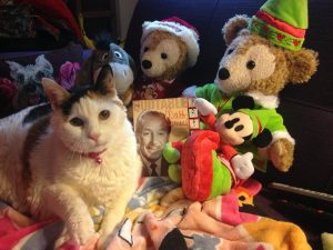 This was my beloved cat, Disney, celebrating Mr. Walt's birthday, along with Duffy (X 2) and Eeyore!